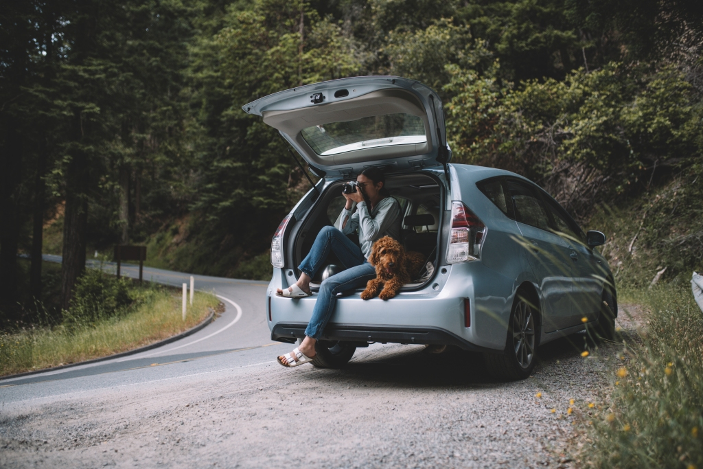 A woman sits in the back of her open car trunk with her dog. They are pulled off to the side of the road and she is holding a camera about to take a picture.